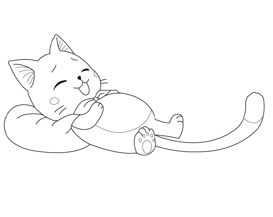 Happy Cat is Sleeping