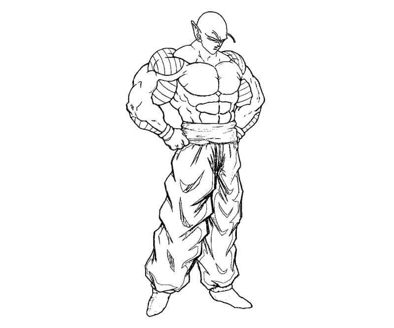 muscle piccolo