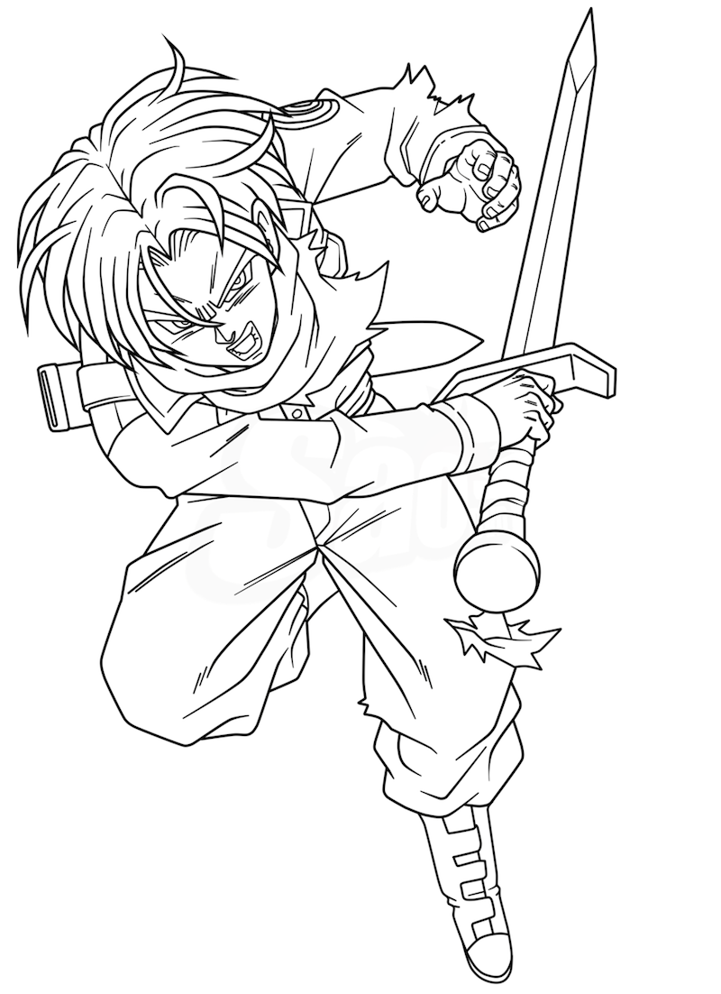 Trunks and Sword