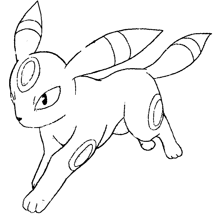 Pokemon Umbreon 4