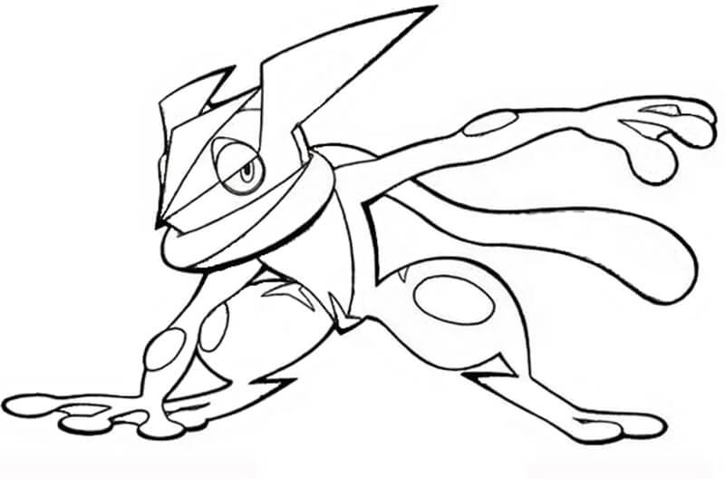 Greninja Pokemon 7