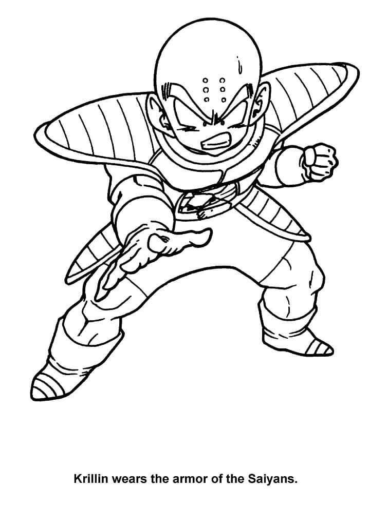 krillin in saiyans armor
