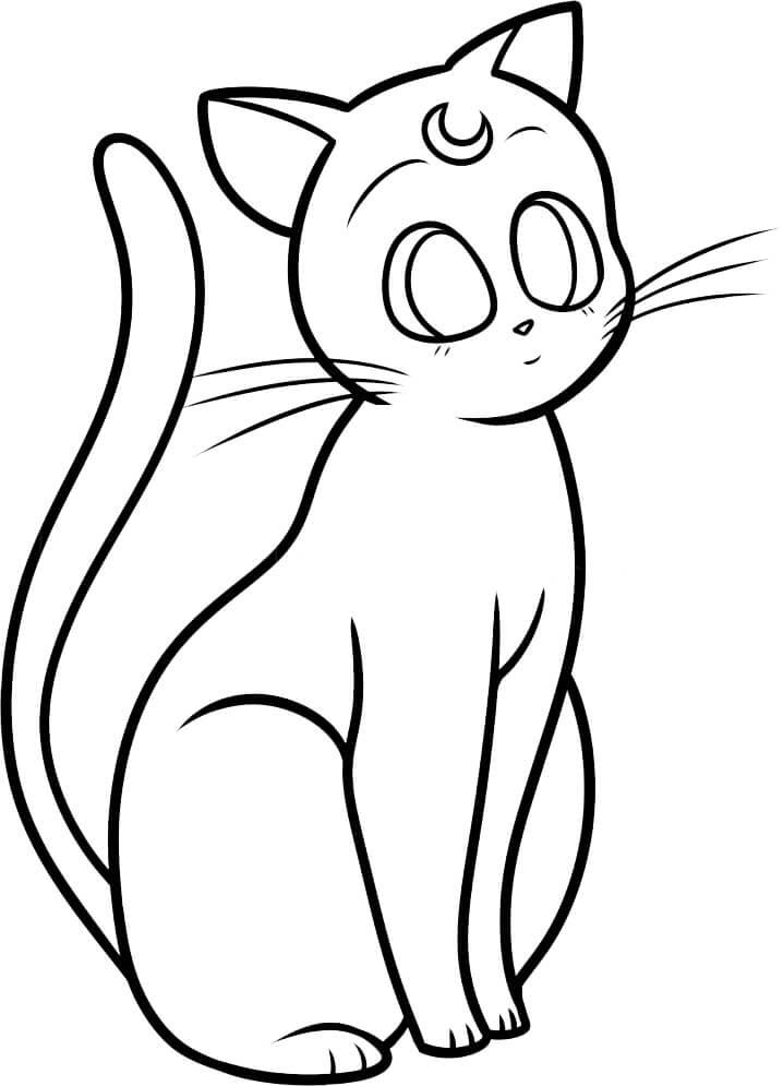 pretty cat sailor moon